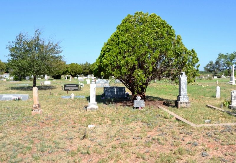 Grave of Locklin Bartholomew Murray in Robert Lee Cemetery image. Click for full size.
