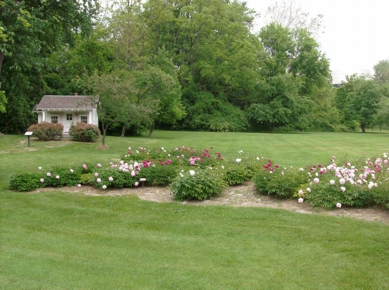 Peony garden, marker, and miniature farmhouse image. Click for full size.