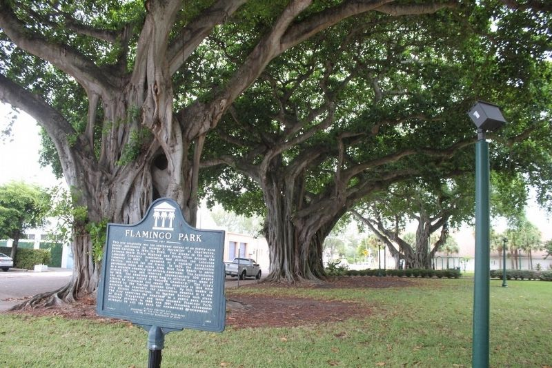 Flamingo Park Marker with banyan trees behind image. Click for full size.