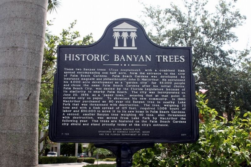 Historic Banyan Trees Marker image. Click for full size.