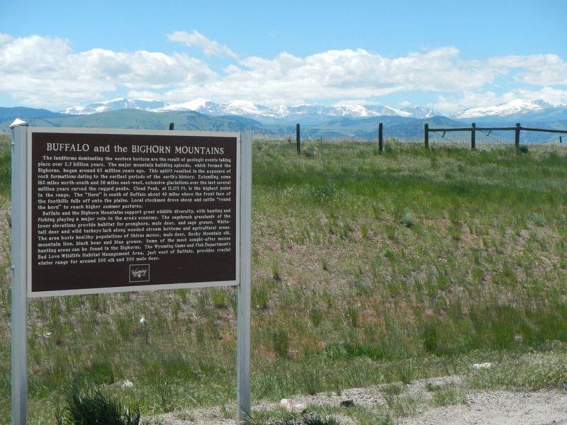 Buffalo and the Bighorn Mountains Marker image. Click for full size.