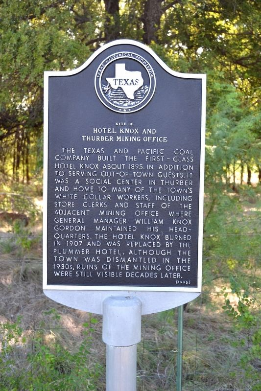 Site of Hotel Knox and Thurber Mining Office Marker image. Click for full size.
