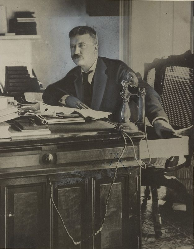 <i>Theodore Roosevelt When he was a New York Police Commissioner</i> image. Click for full size.