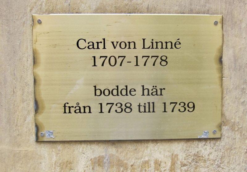 carl von linné wikipedia