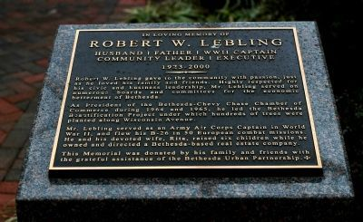 Robert W. Leibling Marker image. Click for full size.