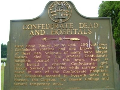 Confederate Dead and Hospitals Marker image. Click for full size.
