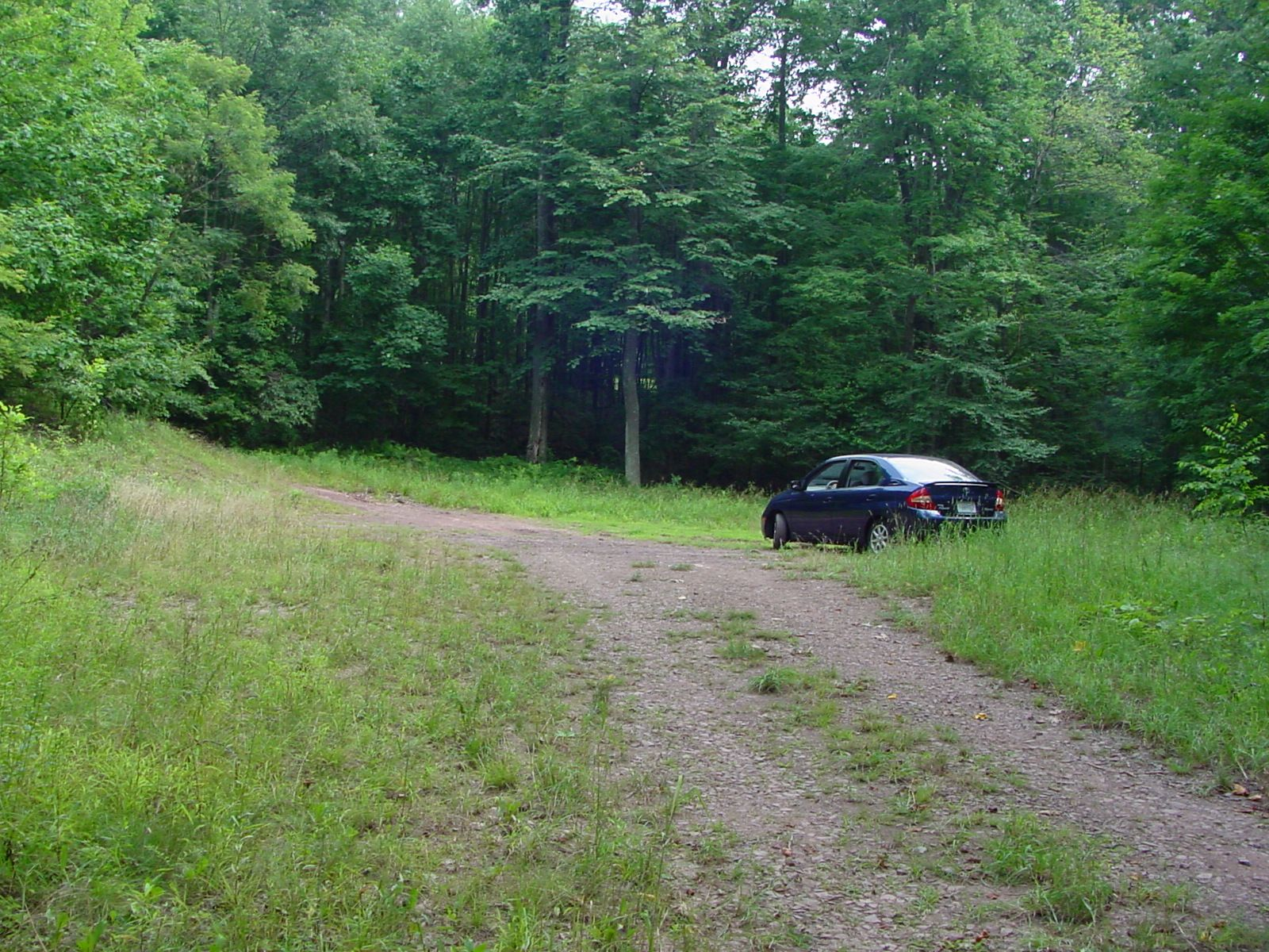 Wide Spot on the Trail Where You Can Park