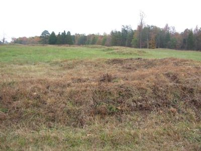 Some of the Earthworks at Fairview image. Click for full size.