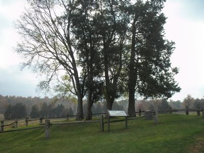 Lacy family cemetery at Ellwood. image. Click for full size.