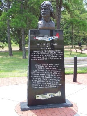 The Tuskegee Airman of World War II Marker image. Click for full size.