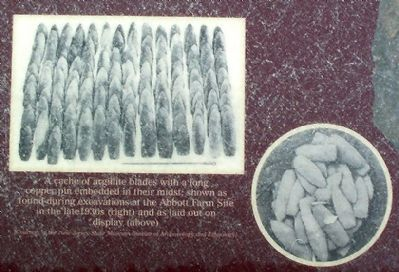 A cache of argillite blades image. Click for full size.
