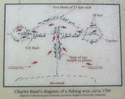 Charles Read's diagram of a fishing weir, circa 1760 image. Click for full size.