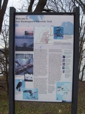 Fort Washington's Waterside Trail image. Click for full size.