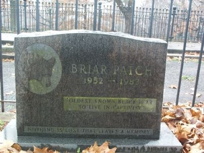 Briar Patch Marker image. Click for full size.