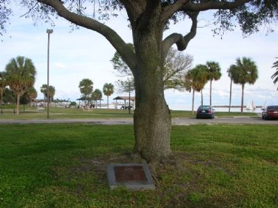 Centennial Oak Tree and marker image. Click for full size.
