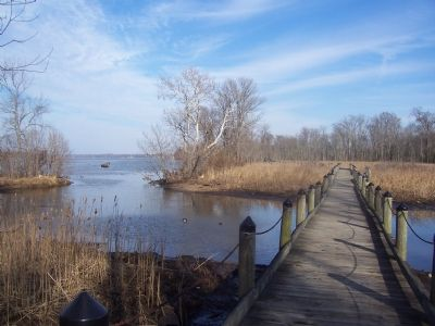 Boardwalk across wetland at Accokeek Creek image. Click for full size.