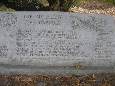 The Mulberry Time Capsule Marker image. Click for full size.