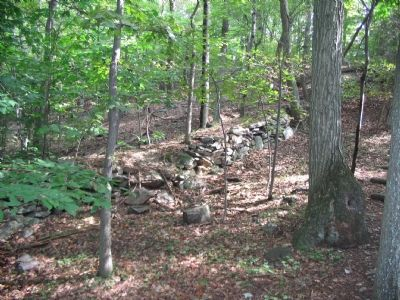 Civil War Fortification Ruins image. Click for full size.