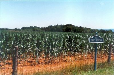 The Bloody Cornfield as it Looked in the 1990s image. Click for full size.