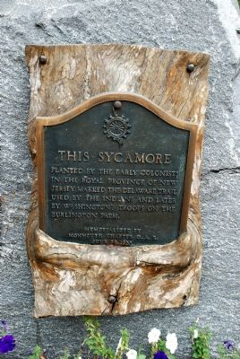 This Sycamore Marker image. Click for full size.