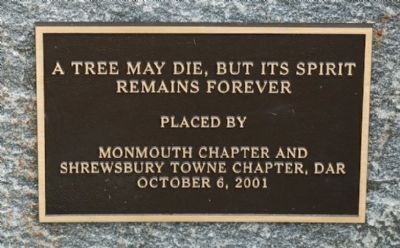 A Tree May Die, But Its Spirit Remains Forever image. Click for full size.