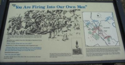 """You Are Firing Into Our Own Men"" Marker image. Click for full size."