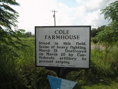 Site of the Cole Plantation image. Click for full size.