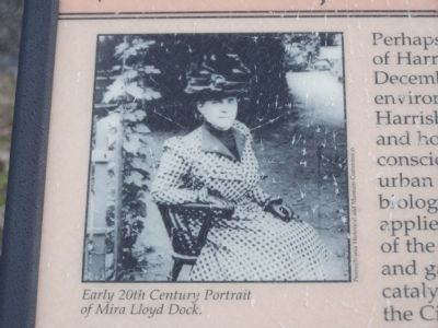 Early 20th Century Portrait of Mira Lloyd Dock image. Click for full size.