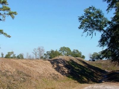 Earthworks, the Remains of Fort Anderson at Brunswick Town Historic Site image. Click for full size.