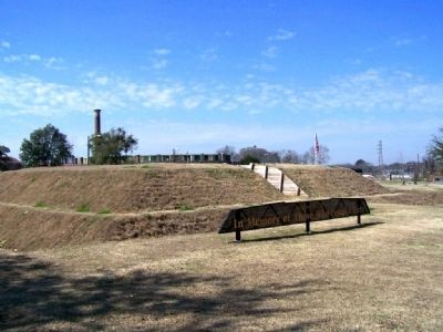 Spring Hill Redoubt is a part of the new Battlefield Park image. Click for full size.