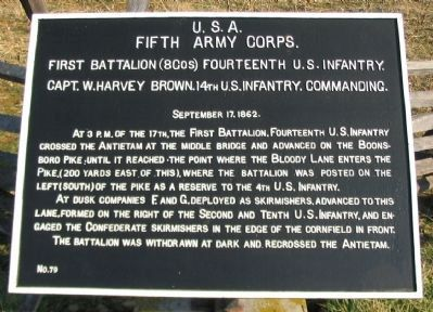 14th U.S. Infantry Tablet image. Click for full size.