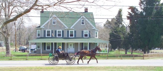 Horse and Buggy on Charlotte Hall Road image. Click for full size.