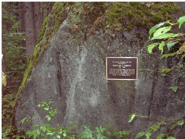 Boulder with marker. image. Click for full size.