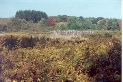 Fort Necessity in Big Meadows. image. Click for full size.