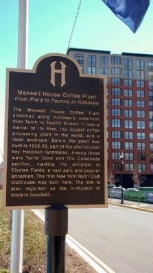 Maxwell House Coffee Plant Marker image. Click for full size.
