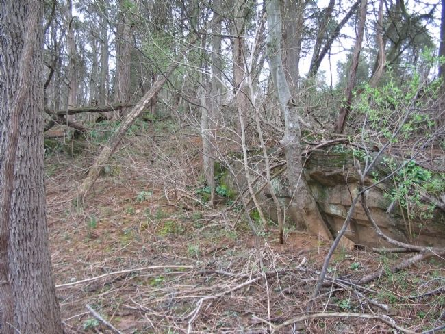 Rock Outcroppings and Ledge in the West Woods image. Click for full size.