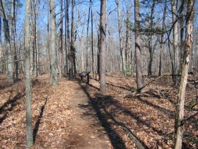 Fourth Wayside on the Loop Trail image. Click for full size.