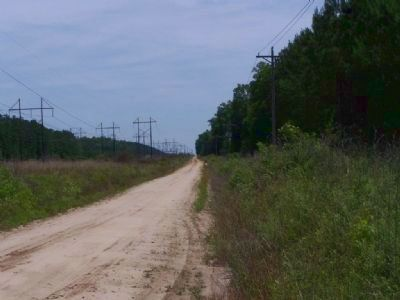 Looking North on Parker's Ferry Road, today image. Click for full size.