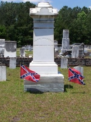 """To The Unknown Confederate Dead"" image. Click for full size."