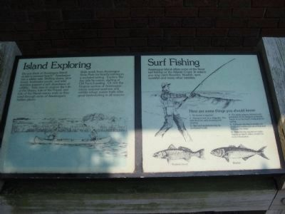 Island Exploring and Surf Fishing Informational Signs image. Click for full size.