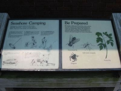 Seashore Camping and Be Prepared Informational Sign image. Click for full size.