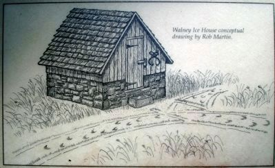 Walney Ice House conceptual drawing by Rob Martin image. Click for full size.