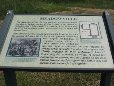 Meadowville Marker image. Click for full size.
