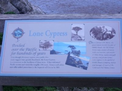 Lone Cypress Marker image. Click for full size.