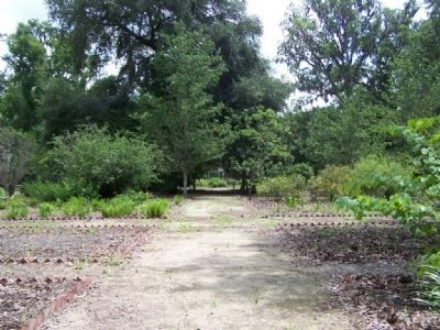 Woodmanston Plantation, more gardens image. Click for full size.