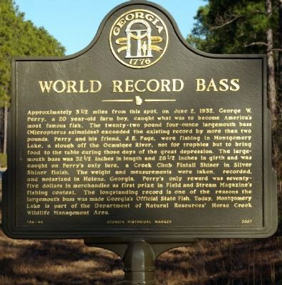 World Record Bass Marker image. Click for full size.