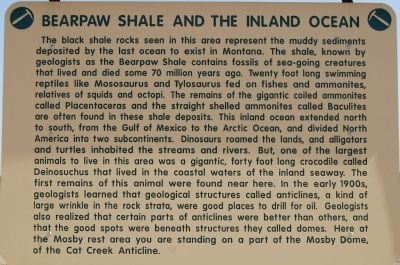 Bearpaw Shale and the Inland Ocean Marker image. Click for full size.