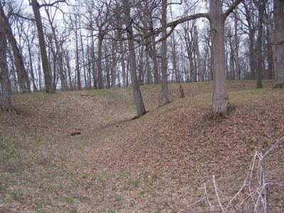 One side of the earthwork mound image. Click for full size.