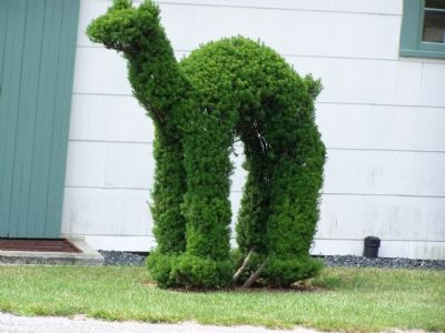 Topiary Created by Harvey Ladew image. Click for full size.