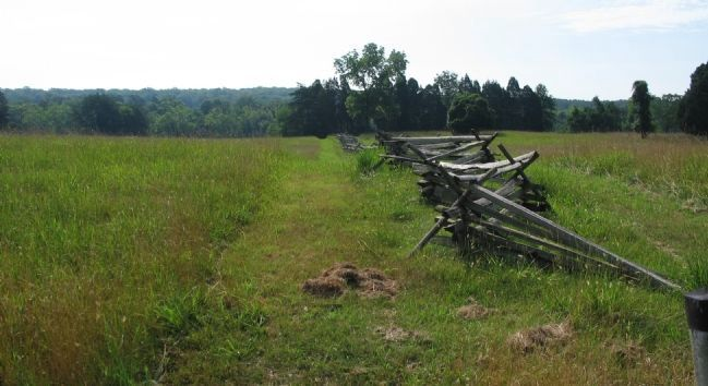 Reconstructed Fence Line image. Click for full size.